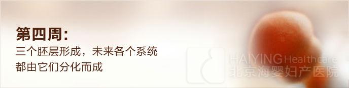 北京安太妇产医院